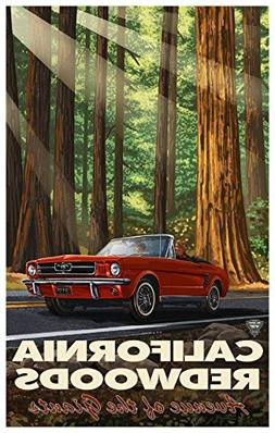 California Redwood Highway Mustang Travel Art Print Poster b
