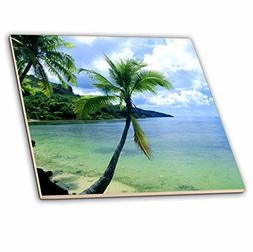 3dRose ct_1205_4 Tropical Paradise Ceramic Tile, 12-Inch