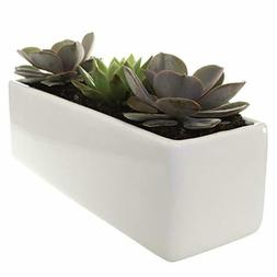 Glossy White Ceramic Planter - 4 x 12 Inches - Urban Rectang