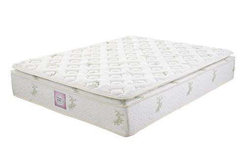 Signature Sleep Mattress, Queen Mattress, Inch Coil Mattress, Soft,