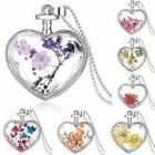 Charm Silver Natural Real Dried Flower Heart Glass Pendant N