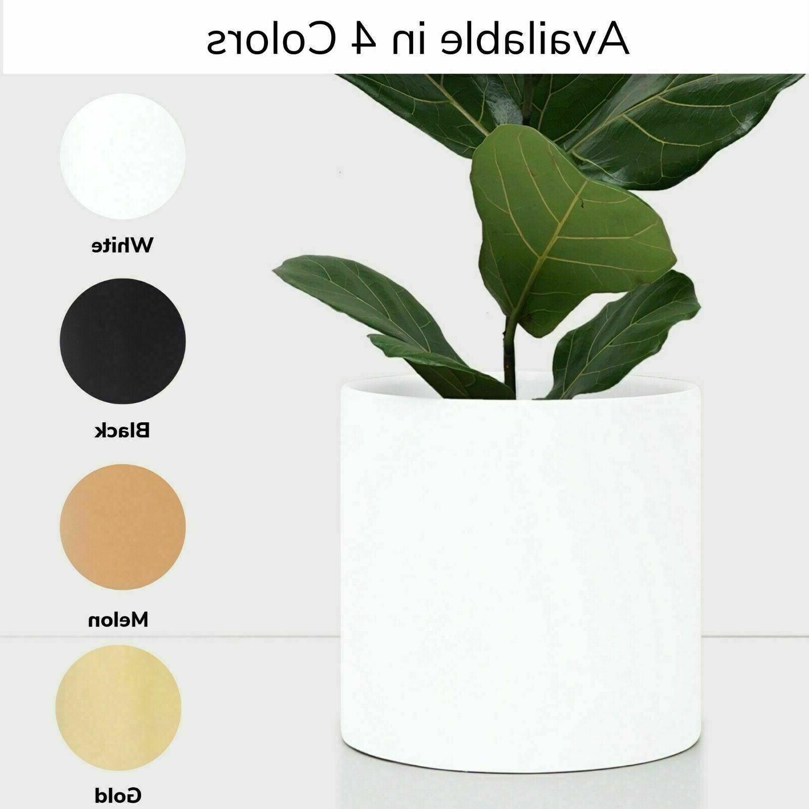 White Ceramic Plant Cylinder Planter Indoor/Outdoor in 5