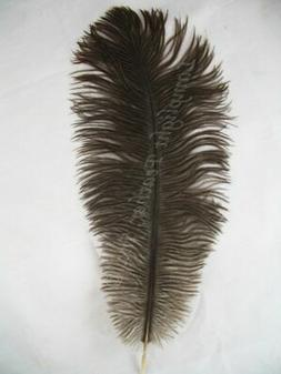 Natural Gray Ostrich Feathers 10-12 inch long per each